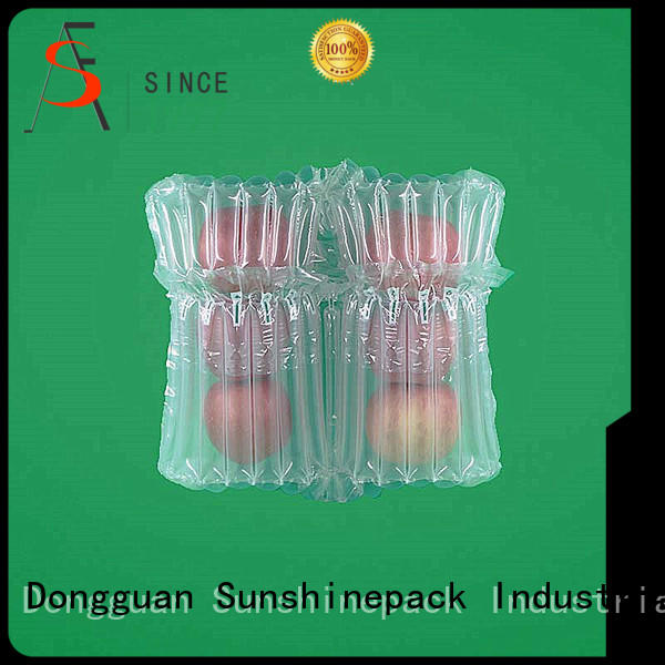 Sunshinepack top brand wine bag for airplane Supply for goods